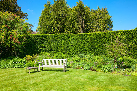 tonte pelouse jardin Rennes paysagiste