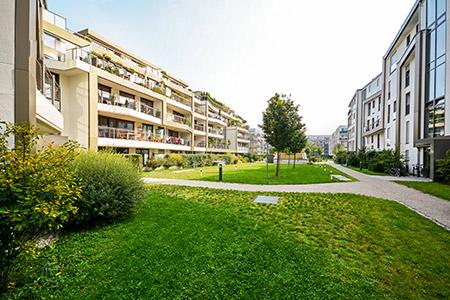 entretien espace vert collectivité et syndic Rennes paysagiste